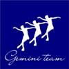 Gemini Team